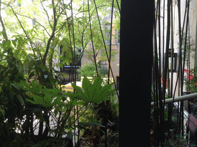 La terrasse au premier étage du Centre de bien-être Oxyzen à Metz : un lieu vert et zen au coeur du centre-ville