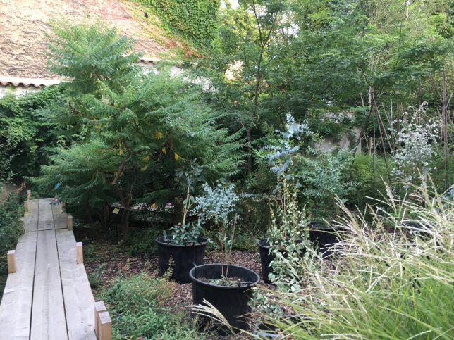 jardin-secret-metz-adoptemetz-frac-lorraine