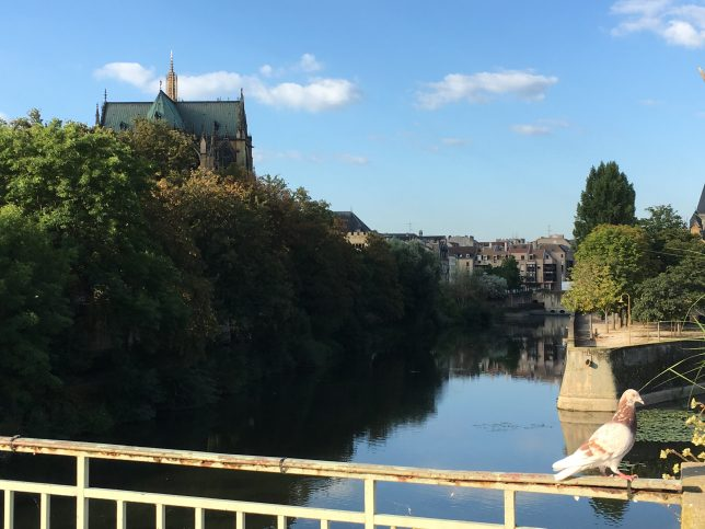 La cathédrale Saint-Etienne de Metz vue depuis le Pont Saint-Georges