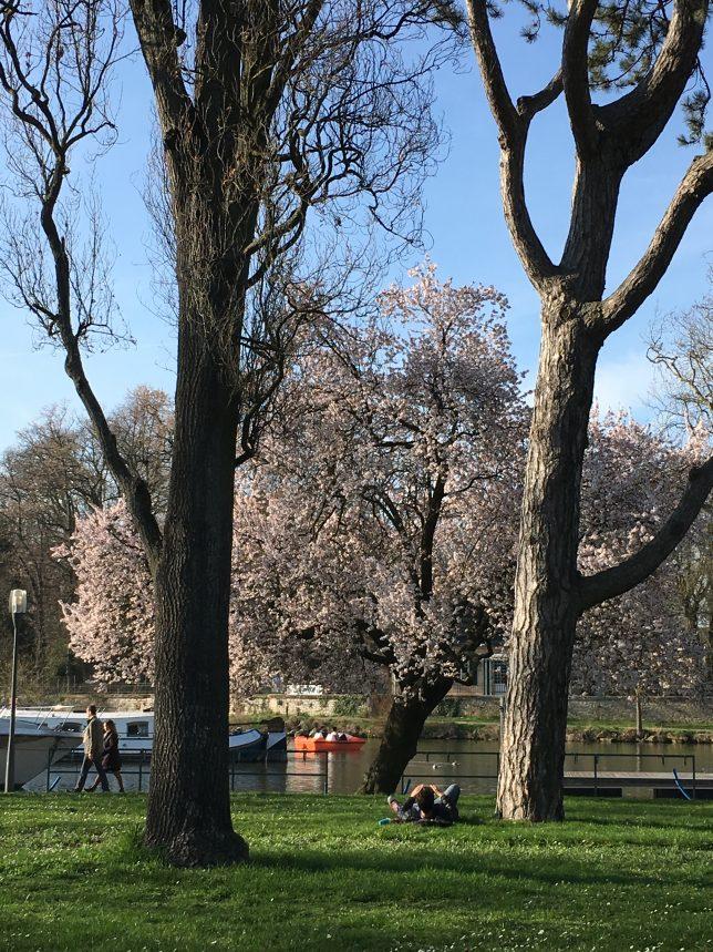 metz-printemps