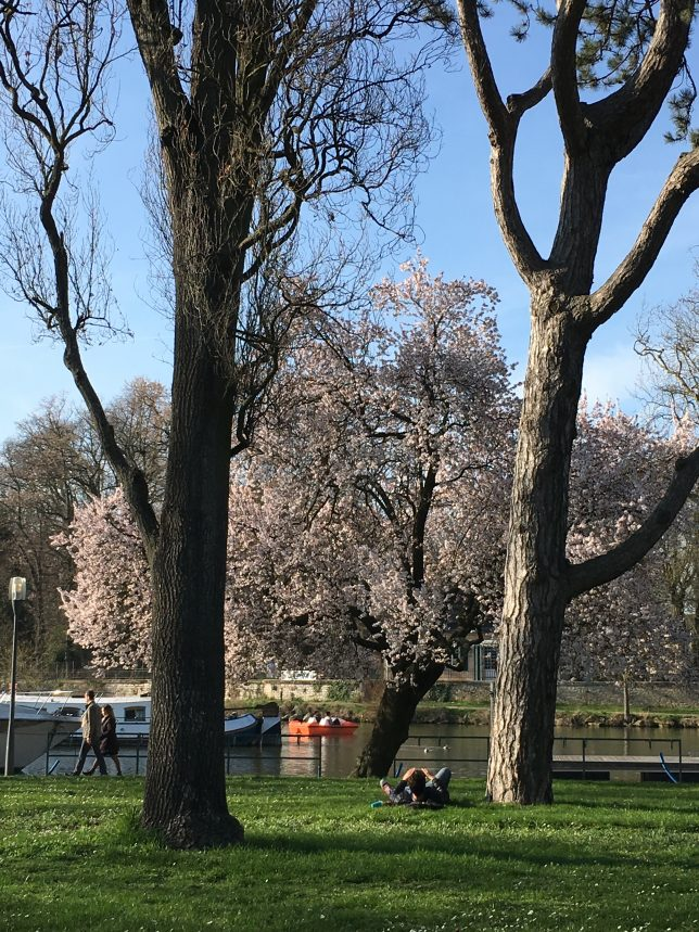 metz-est-wunderbar-printemps