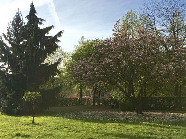 metz-wunderbar-printemps