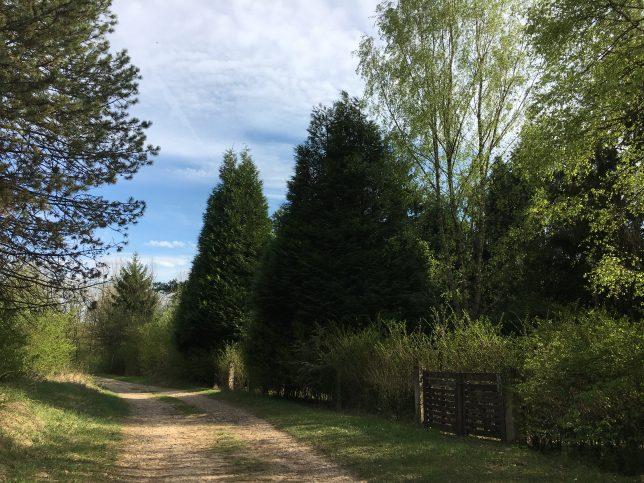 moselle-mont-saint-quentin-plappeville-adoptemetz