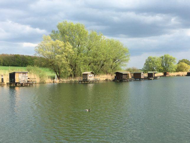 moselle-étang-welschhof-puttelange-aux-lacs-adoptemetz
