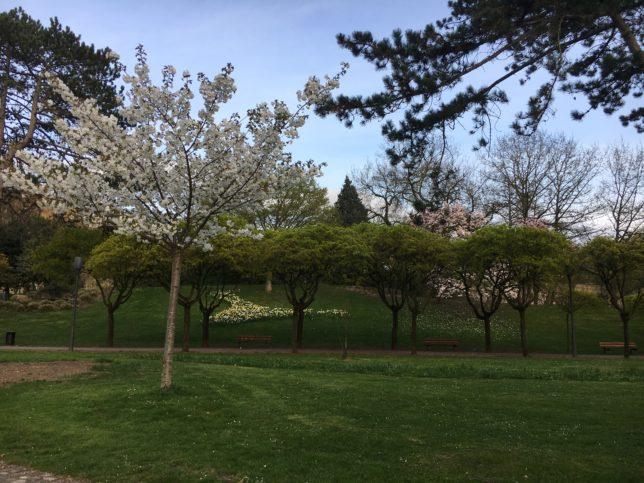 metz-printemps-aventure-couleur-adoptemetz
