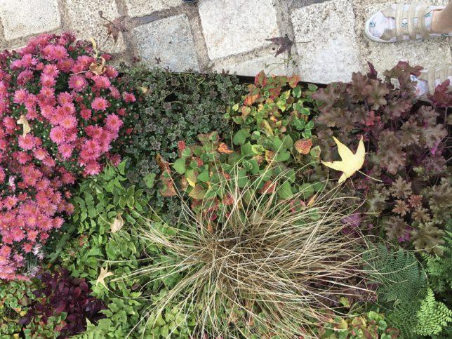 jardins-ephemeres-metz-nancy-lorraine-adoptemetz