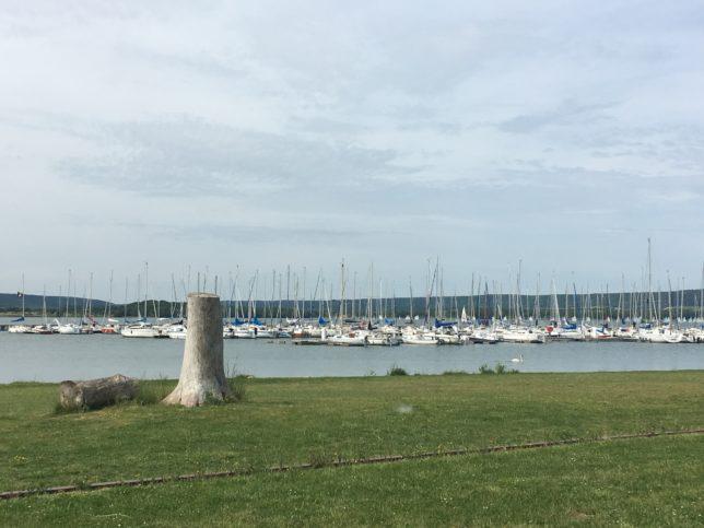 lac-de-madine-adoptemetz