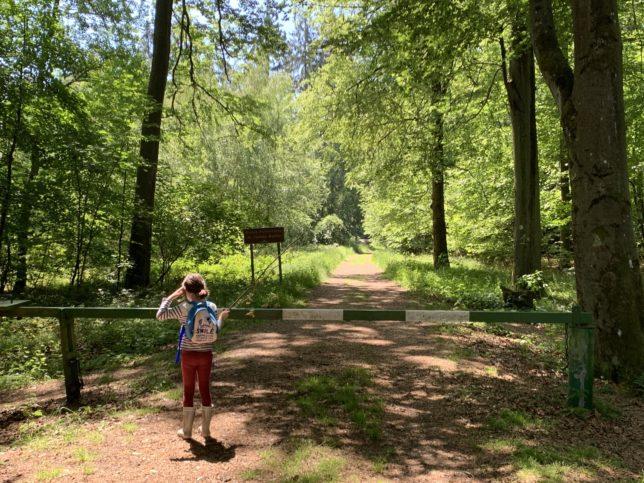 circuit-madone-falck-forêt-de-moselle-adoptemetz